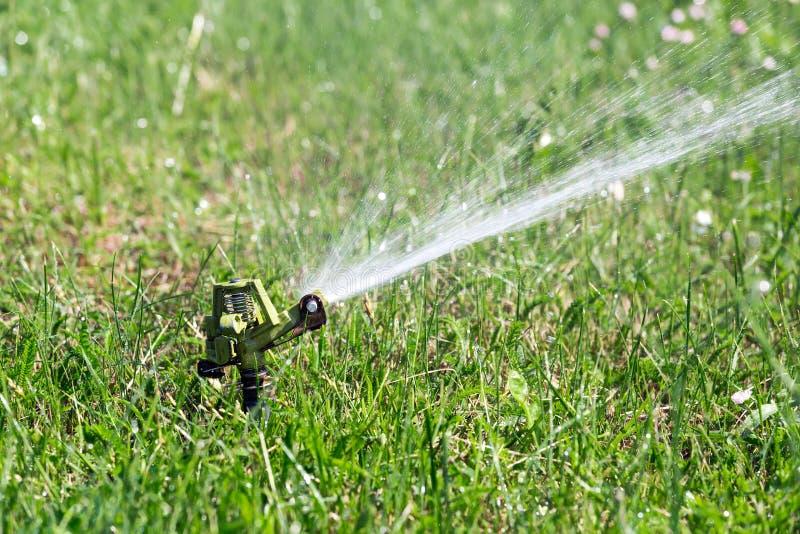 浇灌在庭院里的喷水隆头 免版税库存照片