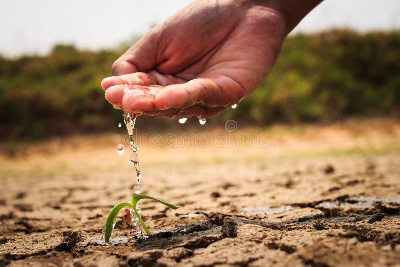 浇灌地面的手贫瘠 免版税库存图片