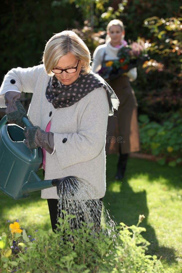 浇灌她的庭院的夫人 免版税库存图片