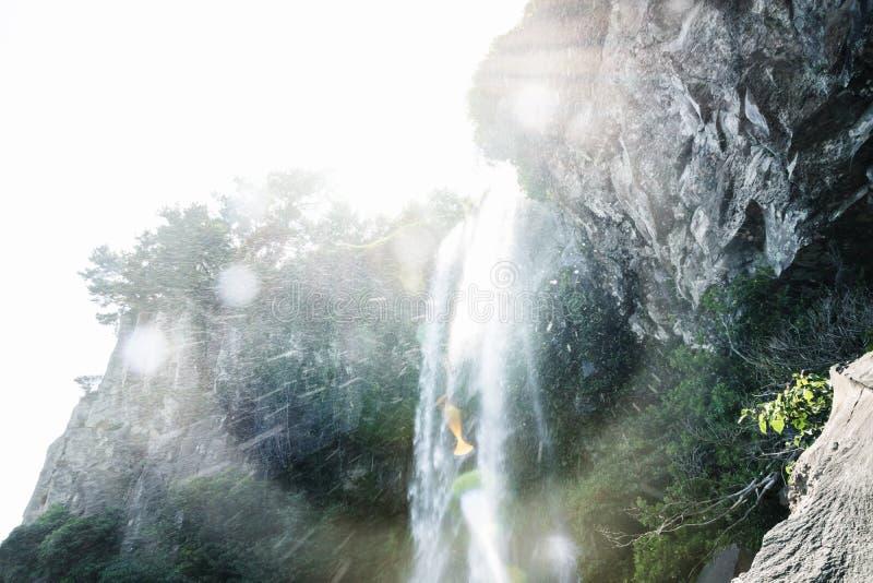 浇灌飞溅在Joengbang瀑布在西归浦,济州海岛,韩国 免版税图库摄影
