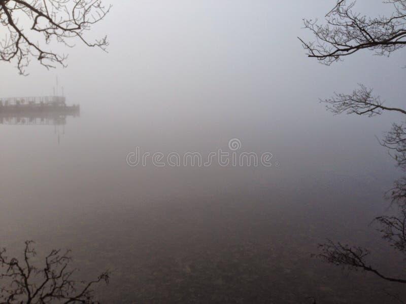 浓厚雾 免版税库存照片