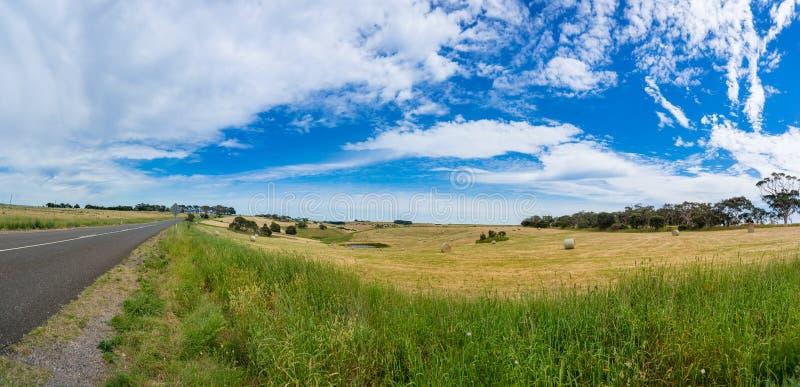 浩大的农田乡下全景与圆的秸杆大包的 库存图片