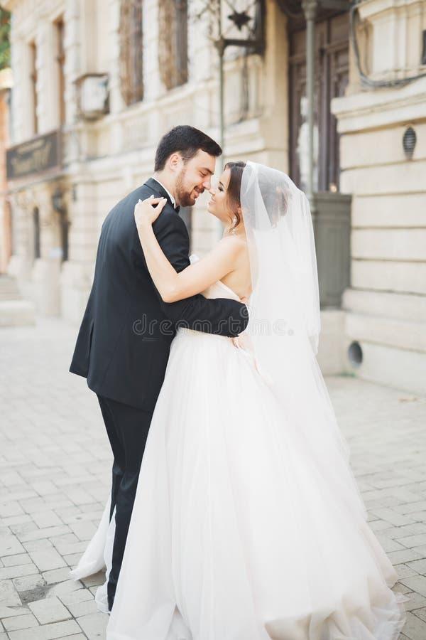 浪漫夫妇跳舞和亲吻在他们的婚礼 库存图片