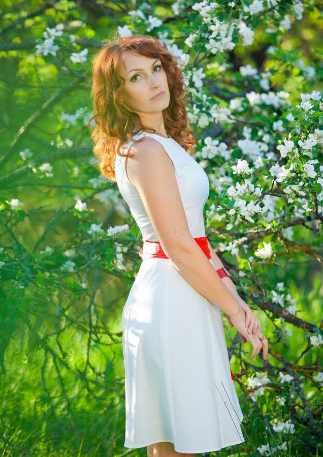 浪漫少妇在春天在苹果开花中的庭院 免版税库存照片