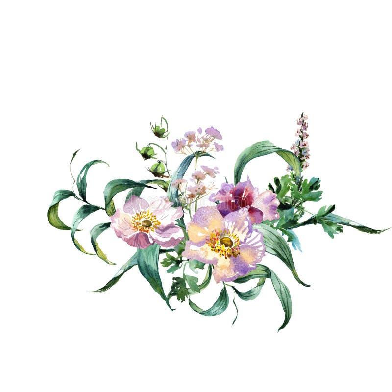 浪漫水彩绿宝石开花分支花束 向量例证