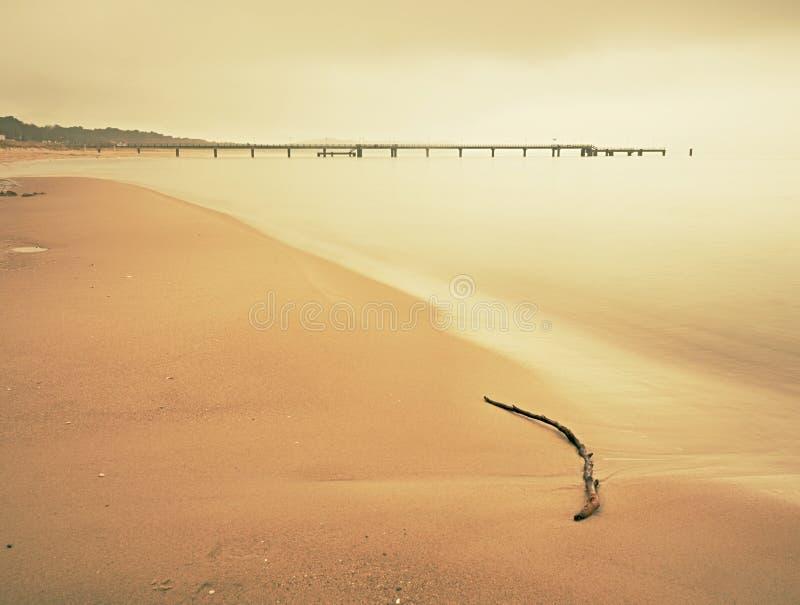 浪漫海上的大气五颜六色的日落 与残破的树干的石海滩 免版税库存照片