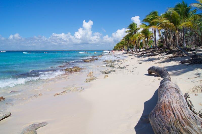 浪漫海滩在加勒比在多米尼加共和国 免版税库存照片