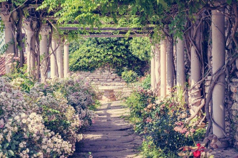 浪漫的庭院 库存照片
