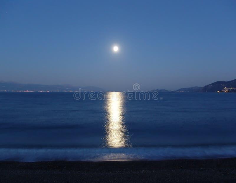 浪漫的月光 免版税库存图片