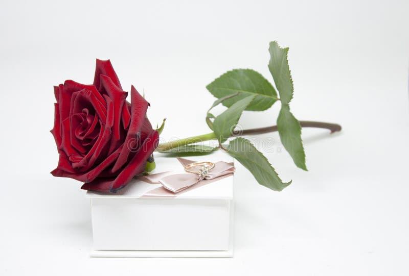 浪漫礼品 花和珠宝 库存照片