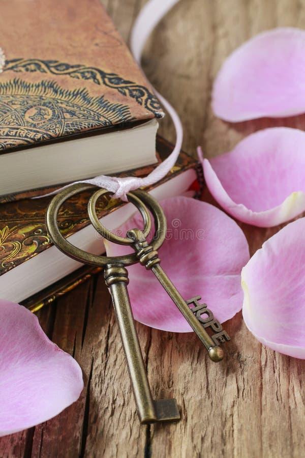 浪漫葡萄酒钥匙和葡萄酒书 图库摄影
