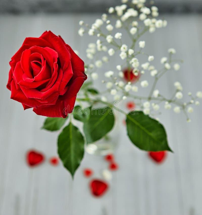 浪漫静物画,红色玫瑰,以心脏的形式巧克力在轻的背景 Valentine& x27;s天概念 库存照片