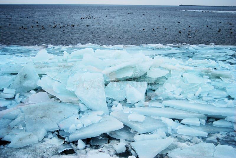 浮冰冰 库存图片