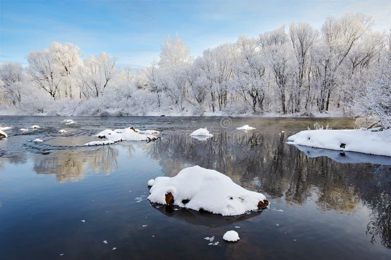 浮动冰和软的霜风景 图库摄影