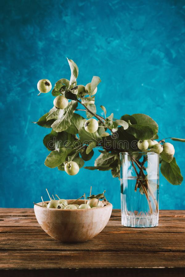 浮动在木碗和树枝上的小新鲜的有机苹果在玻璃 库存照片