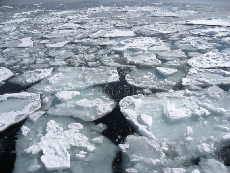浮动的北海道冰 免版税库存图片