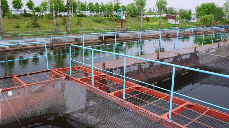 浮船鲟鱼河的渔场 免版税库存照片