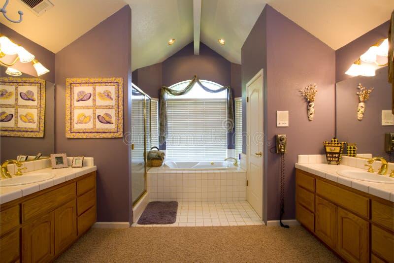 浴主要住宅空间 免版税库存照片