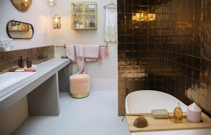 浴室内部  库存照片