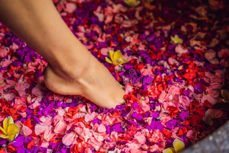 浴的可爱的年轻女人与热带花和芳香油的瓣 皮肤回复的温泉治疗 库存图片