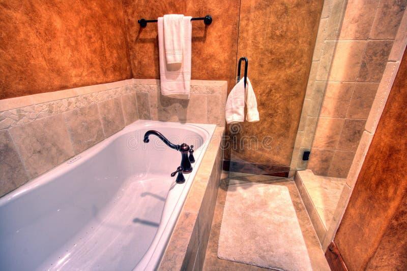 浴缸阵雨 免版税图库摄影
