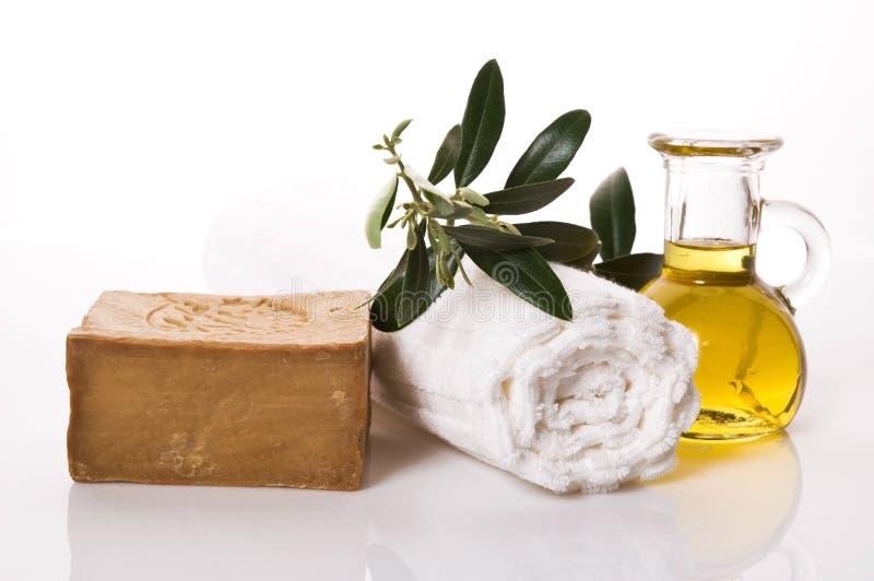 浴项目橄榄健康 免版税库存图片