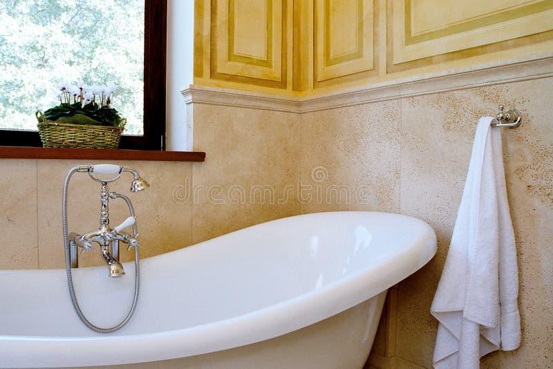 浴 库存照片