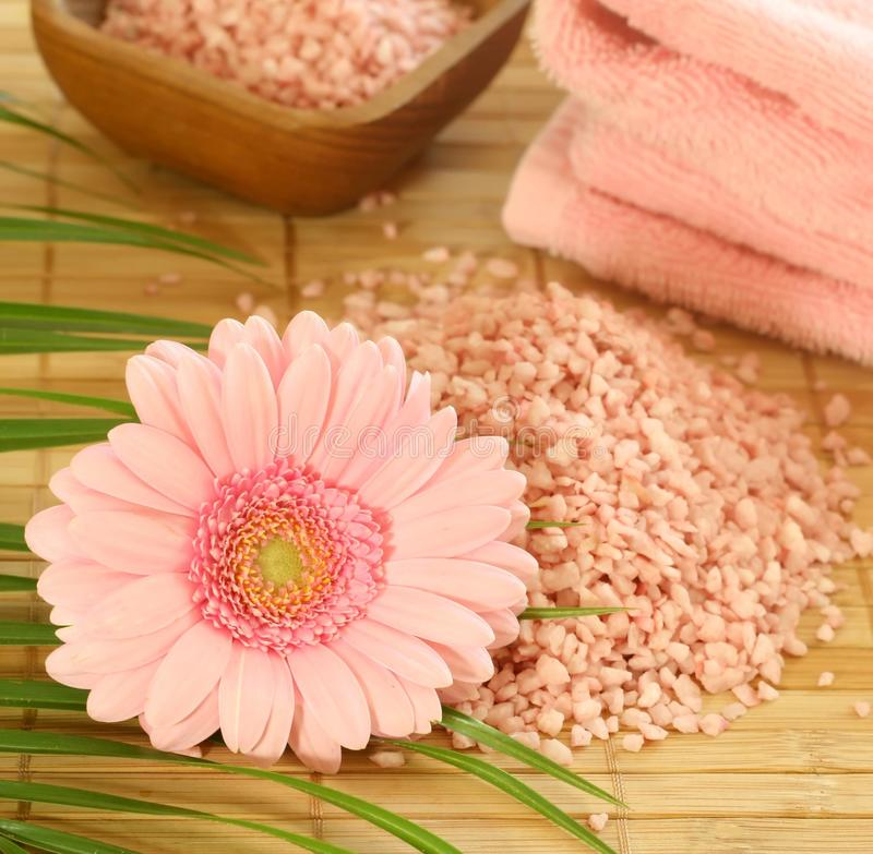 浴gerber粉红色盐毛巾 免版税库存图片
