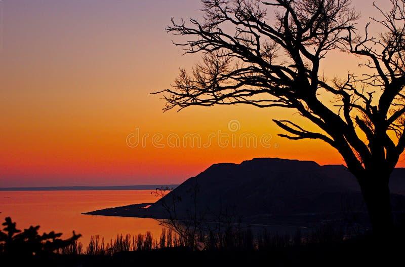 海、海洋明亮的红色橙色日落背景的,山和树在倾斜 免版税库存照片