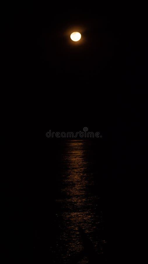 海上的月光 免版税库存图片