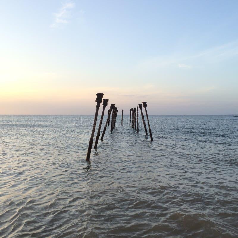 海上的木头 免版税库存图片