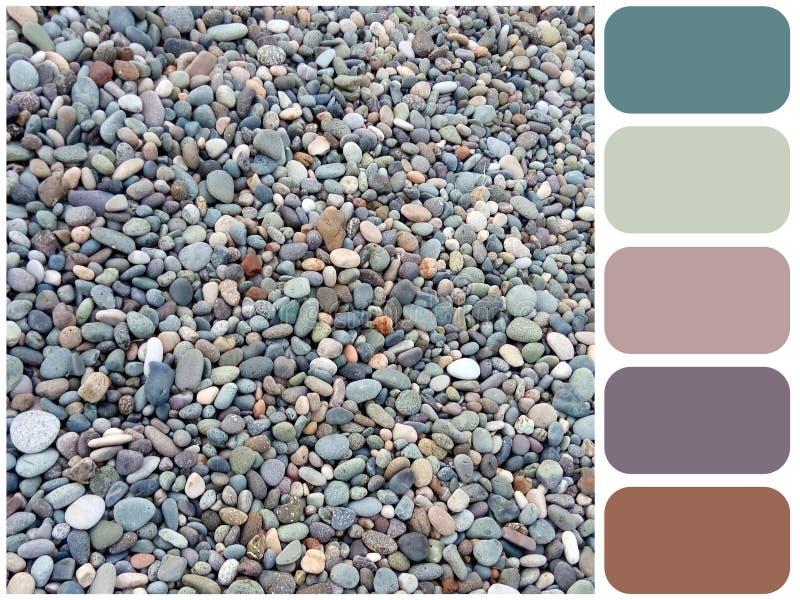 海向纹理,背景有颜色样片的色板显示扔石头 免版税图库摄影
