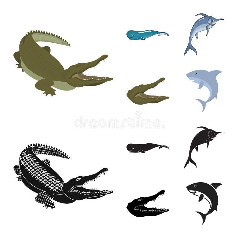 海和海洋商标被隔绝的对象  海和爬行动物股票的传染媒介象的汇集 库存例证