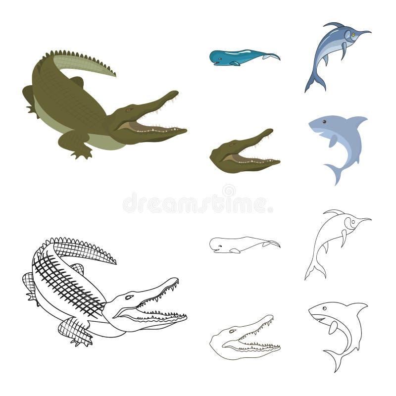 海和海洋标志的传染媒介例证 设置海和爬行动物储蓄传染媒介例证 库存例证