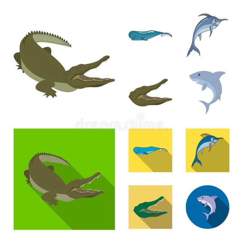 海和海洋标志的传染媒介例证 设置海和爬行动物股票的传染媒介象 库存例证