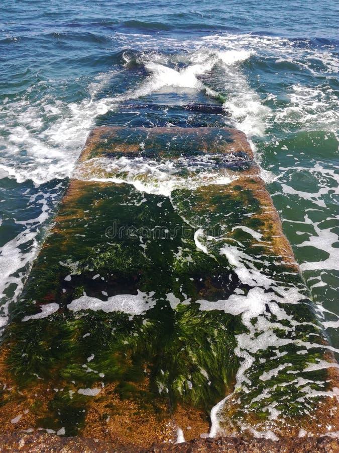 海在傲德萨 库存照片