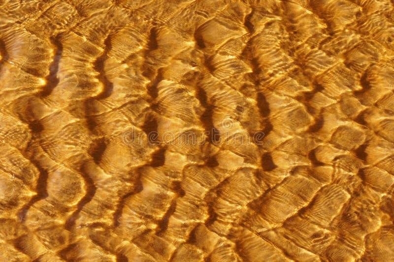 海在金黄沙子的波纹样式 免版税图库摄影