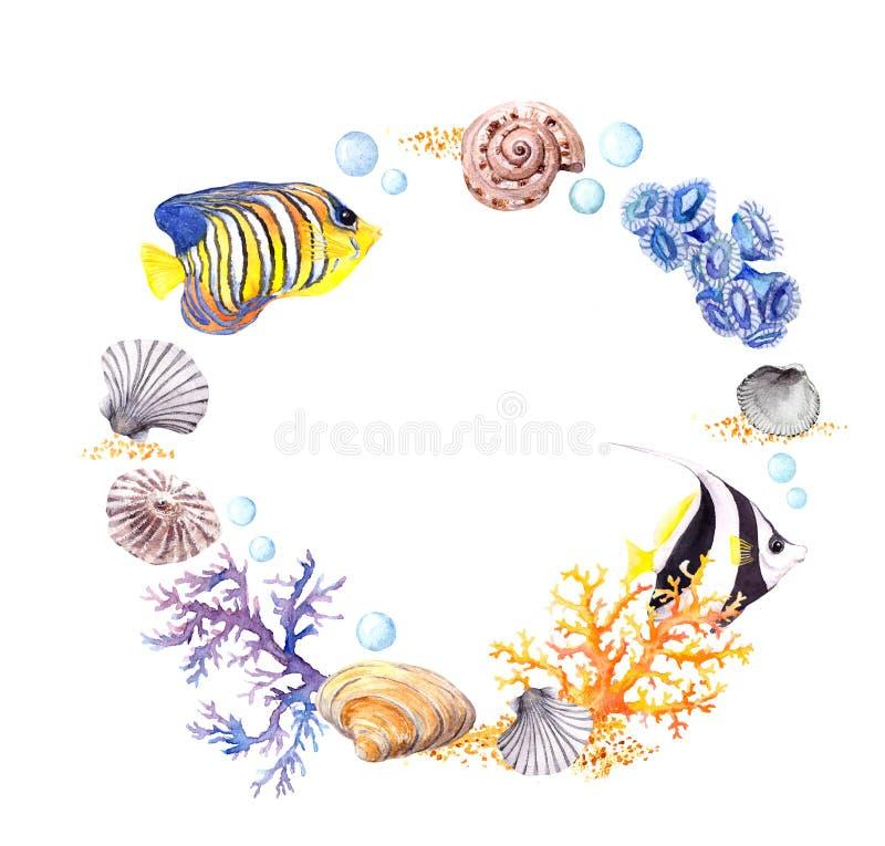 海壳,珊瑚,沙子 夏天海滩花圈边界 水彩 库存图片