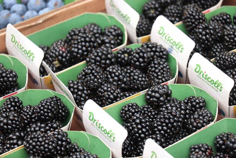 海姆斯泰德,荷兰- 2019年5月26日:在市场上的莓 库存照片