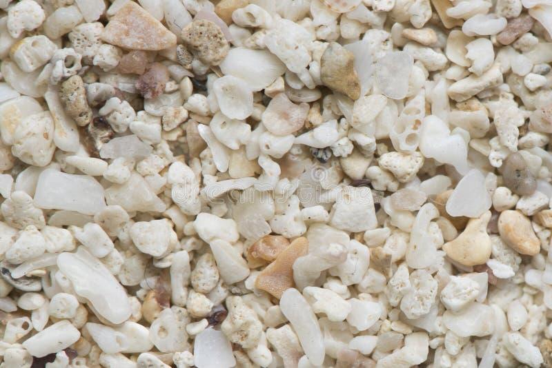 海小卵石 五颜六色的小小卵石和石纹理 详细的沙子纹理 免版税库存图片