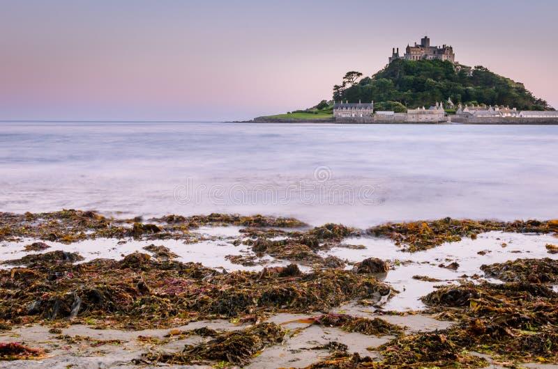 海岛城堡海洋海草 免版税库存图片