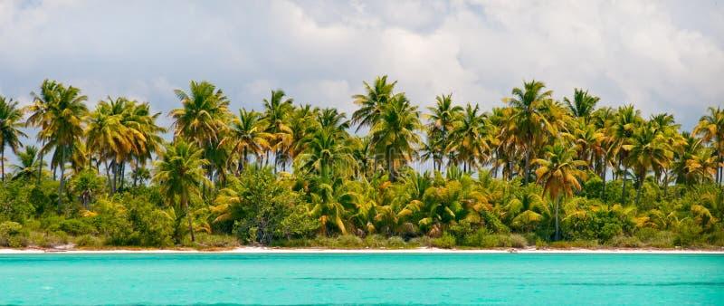 海岛掌上型计算机海运热带天空的结&# 免版税库存照片