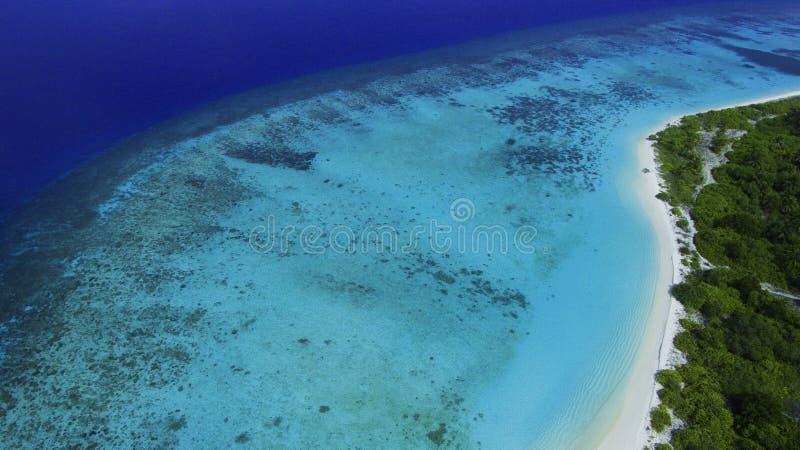 海岛热带的马尔代夫 库存照片