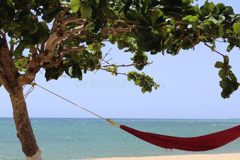 海岛的好的生活 免版税库存照片