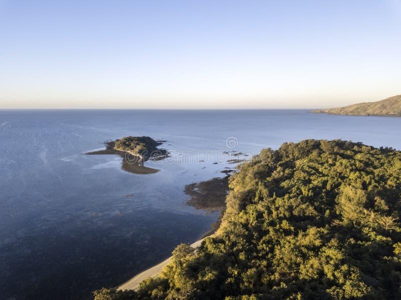 海岛盖子寄生虫视图有树的 免版税图库摄影