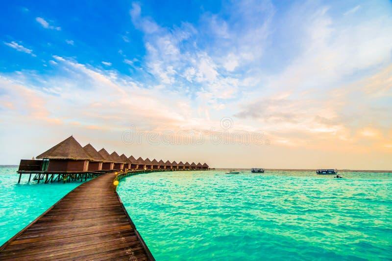 Download 海岛马尔代夫 库存图片. 图片 包括有 天空, 目的地, 海洋, 热带, 沙子, 绿色, 旅行, 背包, 掌上型计算机 - 72365055