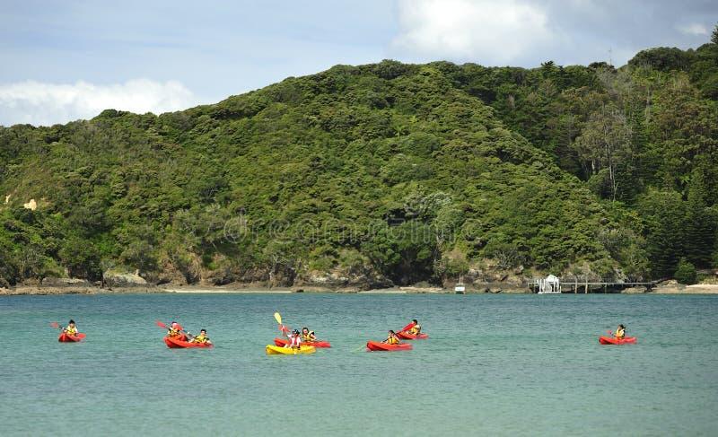 海岛,新西兰海湾  库存照片
