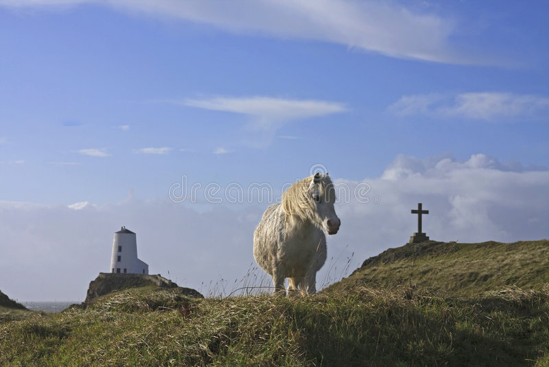 海岛llanddwyn 免版税库存照片