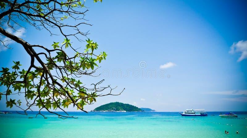 海岛similan的普吉岛 库存照片