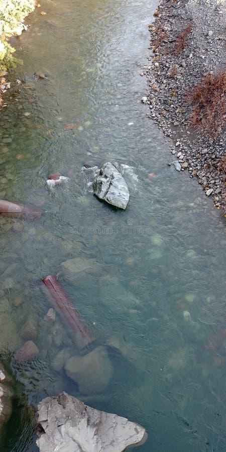 海岸冰横向河水冬天 免版税库存照片